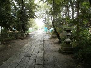 Ekikarakagohara_20110619_086