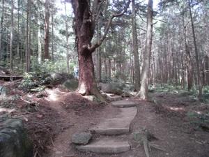 Tsukubasan_20110624_087
