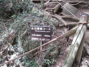 Tsukubasan_20110624_113