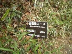 Tsukubasan_20110624_131