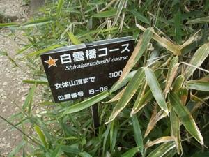 Tsukubasan_20110624_192