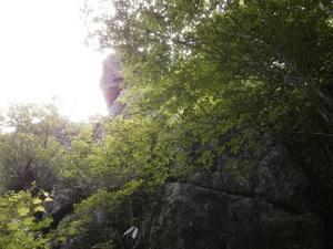 Tsukubasan_20110624_201