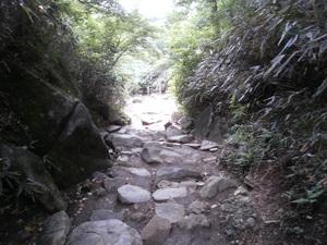 Tsukubasan_20110624_265