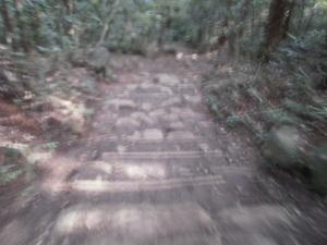 Tsukubasan_20110624_402