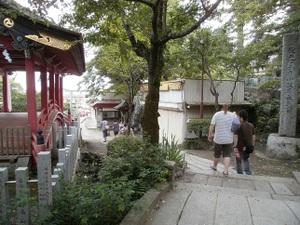 Tsukubasan_20110624_422