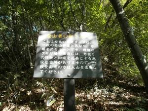 Myougisan_takagaeshi_20110629_096