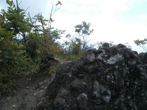 Myougisan_takagaeshi_20110629_354