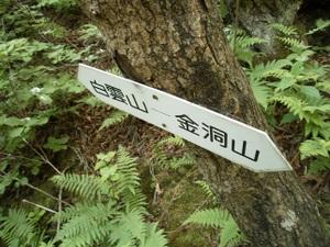 Myougisan_takagaeshi_20110629_371