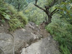 Myougisan_takagaeshi_20110629_412