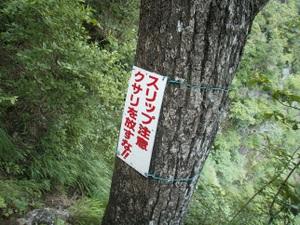 Myougisan_takagaeshi_20110629_415