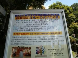 Myougisan_takagaeshi_20110629_515