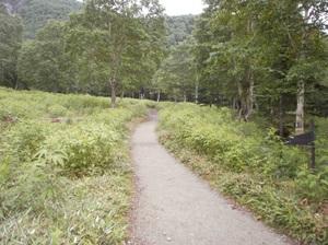 Nikkoshiranesan_20110709_034