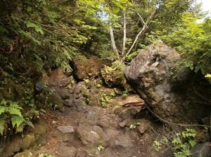 Nikkoshiranesan_20110709_069