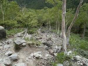 Nikkoshiranesan_20110709_397