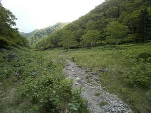 Nikkoshiranesan_20110709_454