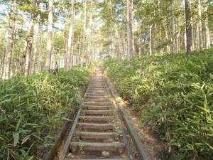 Yatsugatake_akadake_20110715_047