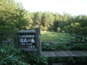 Yatsugatake_akadake_20110715_058