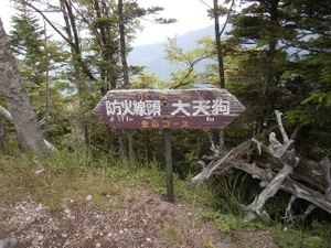 Yatsugatake_akadake_20110715_486