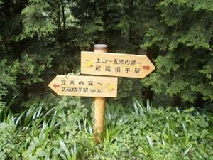 Hiwadayama_pim_20110806_130