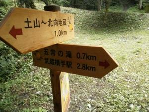 Hiwadayama_pim_20110806_138