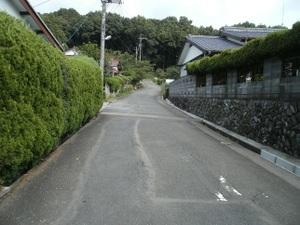 Hiwadayama_pim_20110806_201
