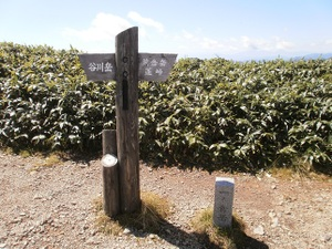 Tanigawadake_20110907_501