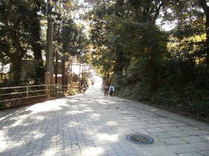 Takaosan_20110910_297