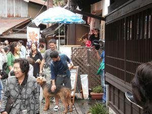 Koedo_kawagoe_20110923_040