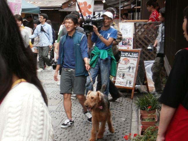 Koedo_kawagoe_20110923_041_2