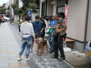 Koedo_kawagoe_20110923_058