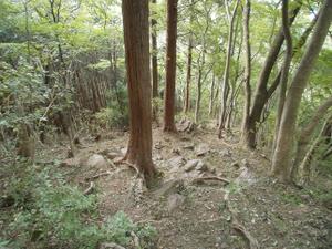 Izugatake_20110919_131