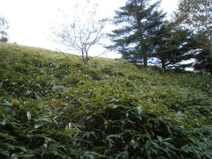 Daibosatsurei_20111008_120