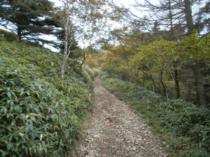 Daibosatsurei_20111008_121
