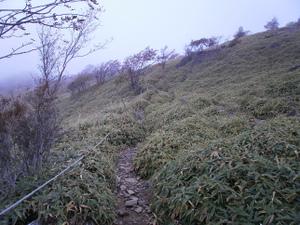 Daibosatsurei_20111008_222