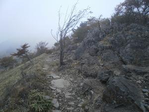 Daibosatsurei_20111008_227