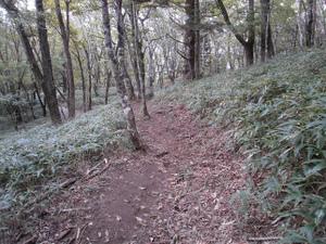 Daibosatsurei_20111008_320
