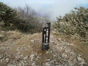 Tairappyouyama_20111021_457