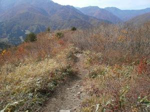 Tairappyouyama_20111021_578