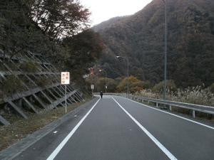 Karisakarei_20111029_038