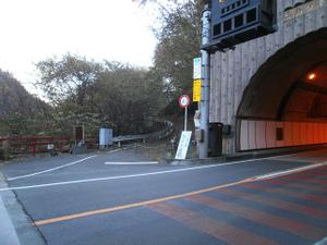 Karisakarei_20111029_069