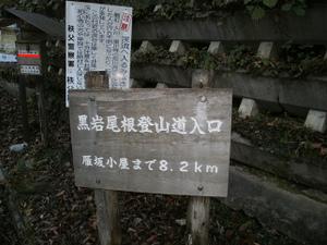 Karisakarei_20111029_073