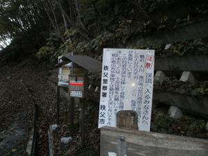 Karisakarei_20111029_074