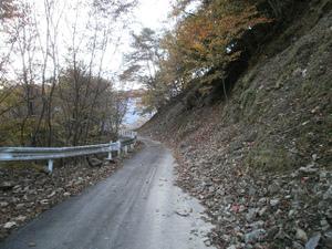 Karisakarei_20111029_078