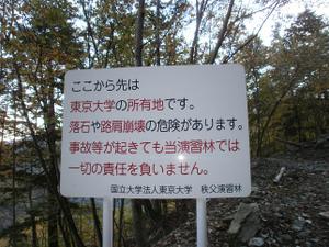 Karisakarei_20111029_082