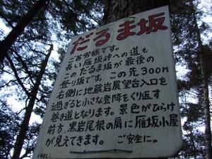 Karisakarei2_20111029_095