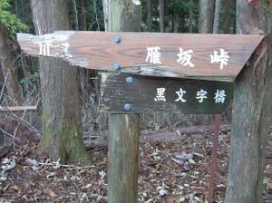 Karisakarei2_20111029_146