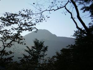 Karisakarei_20111029_115