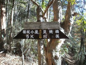 Karisakarei_20111029_137