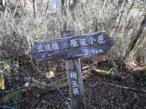 Karisakarei_20111029_156