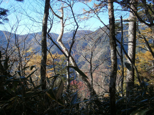 Karisakarei_20111029_190